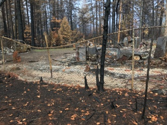 Tommy Hail's family's house survived the Camp Fire, but it was on the only one on their block. This is a view of their next door neighbor's property.